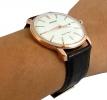 Мужские часы Orient FUG1R005W6 0